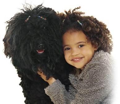 dog_and_kids_01